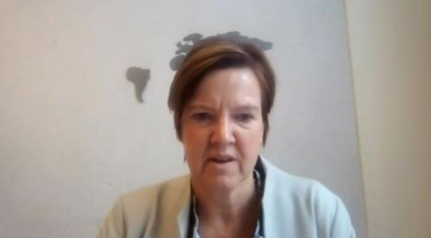 Els Van Hoof, Member of the Federal Parliament of Belgium, of the Foreign Affairs Committee